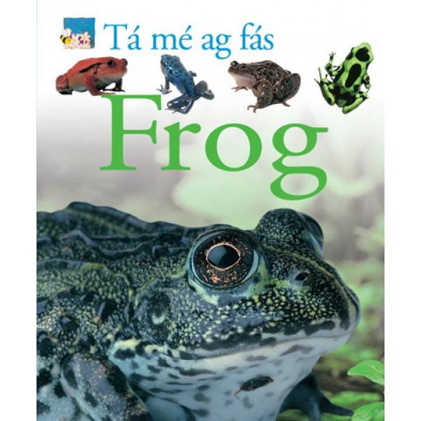 Tá mé ag fás - Frog