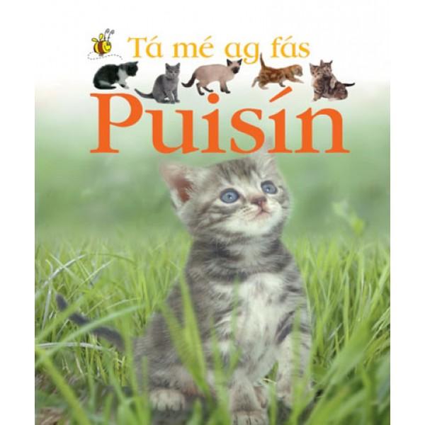 Tá mé ag fás - Puisín